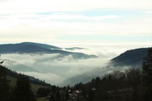 Nebelmeer-im-Tal.JPG