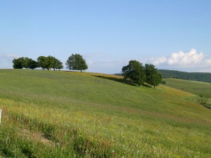 Schauinsland.jpg