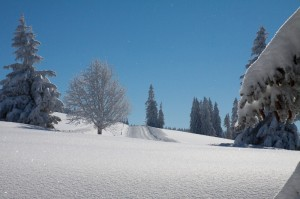 Winterimpression_Stbenwasengipfel.jpg