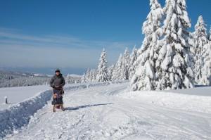 Winterspaziergang.jpg