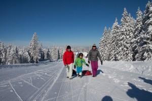 Winterwanderung-Rodelspass.jpg